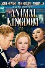 Watch The Animal Kingdom Putlocker