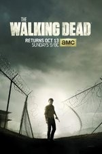 the walking dead tv poster